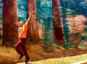 Redwoodskip
